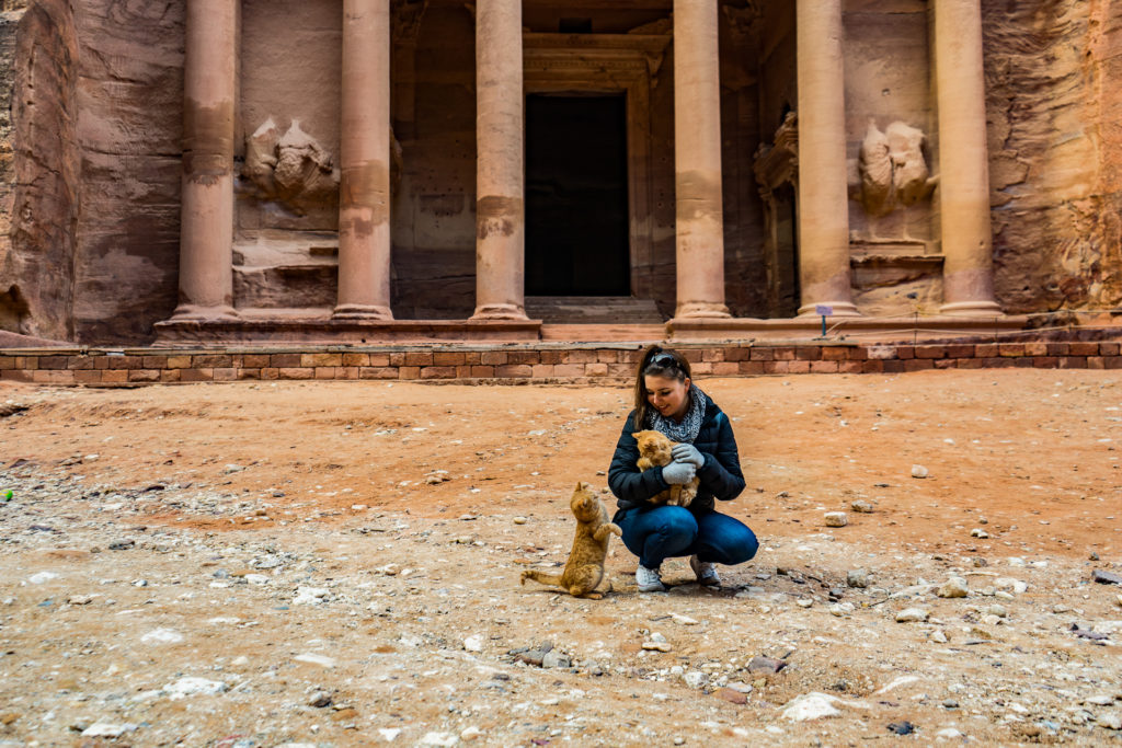 The cats of Petra, Jordan