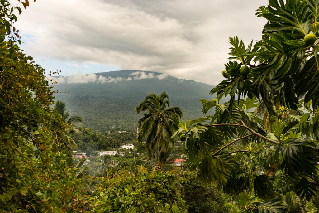 Rainforest in Comoros