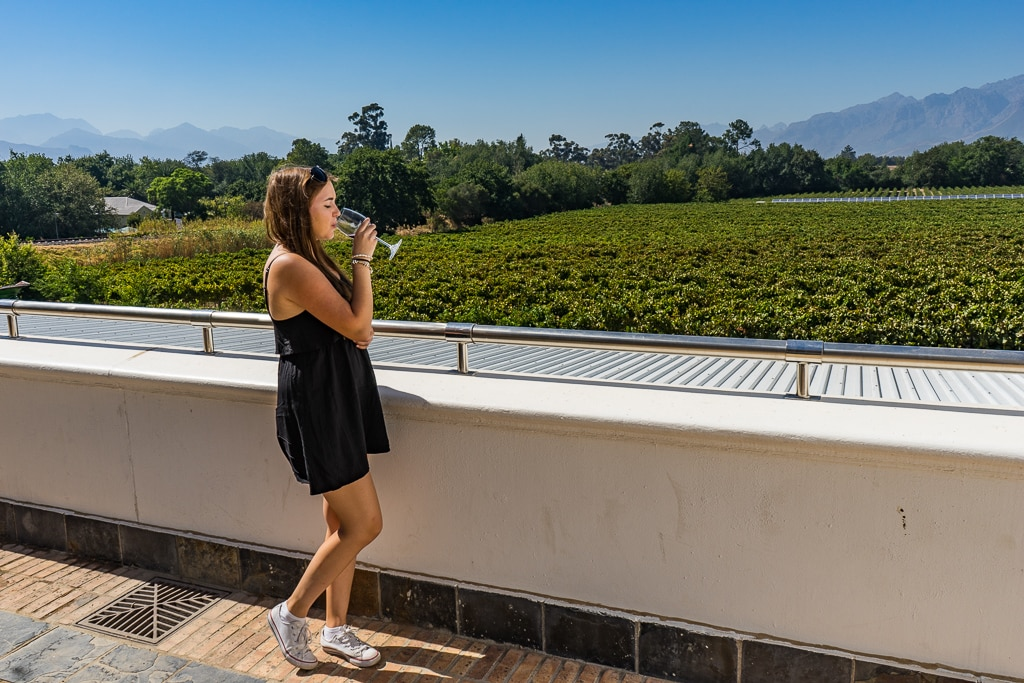 Wine tasting at Vrede en Lust in Franschhoek