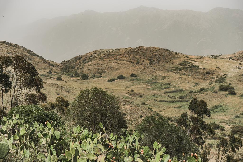 The landscape in Eritrea