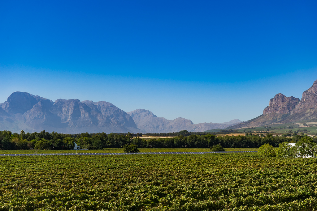 Cape Winelands, Franschhoek