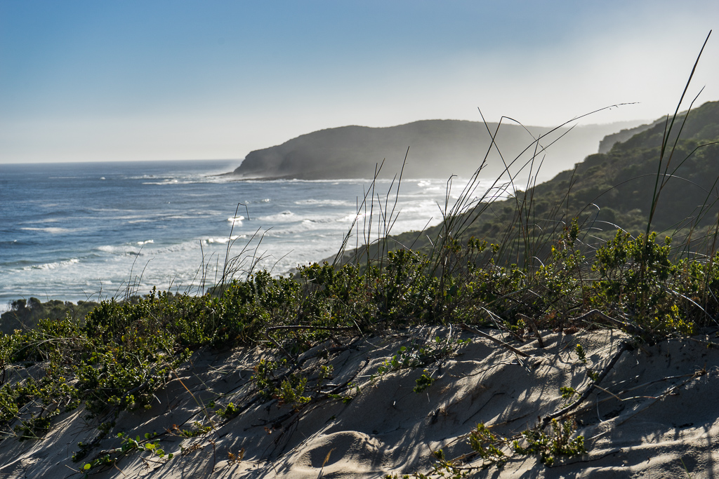 Hiking in the Robberg Nature Reserve, The Garden Route, South Africa