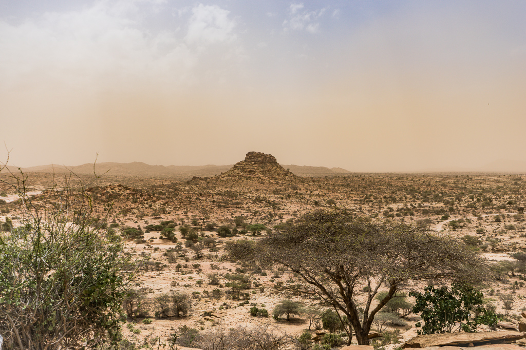 Somaliland desert