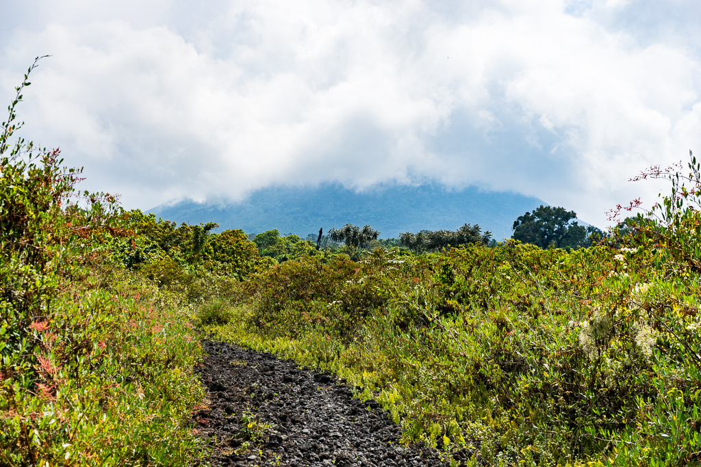A Hike to the World's Largest Lava Lake - Mount Nyiragongo, DR Congo