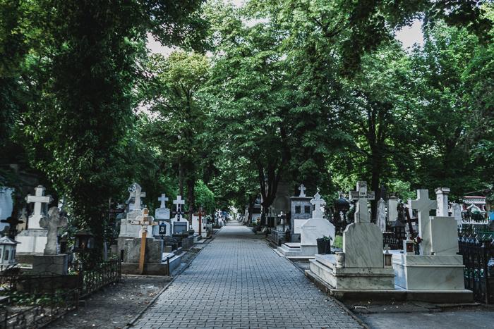 Bellu Cemetery, Bucharest