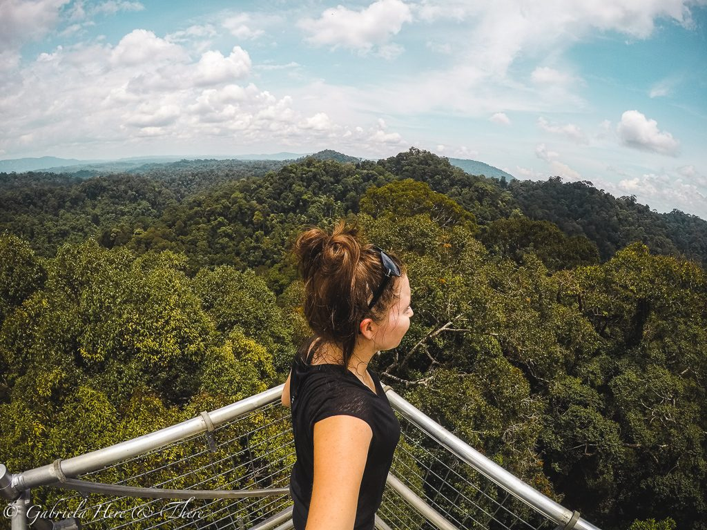 Canopy walk, Ulu Temburong National Park, Brunei